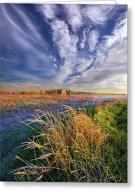 State Of Mind Greeting Card by Phil Koch
