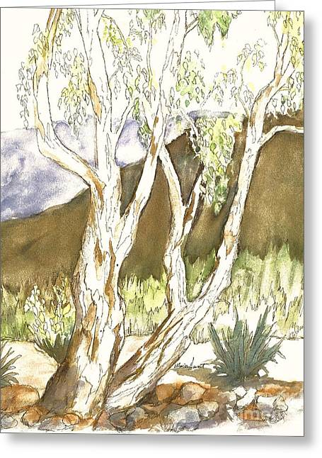 Pen Greeting Cards - Stately Old Tree Greeting Card by Maria Hunt