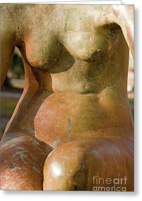 Woman Torso Photograph Greeting Cards - Statue in the Nude Greeting Card by Kathleen K Parker