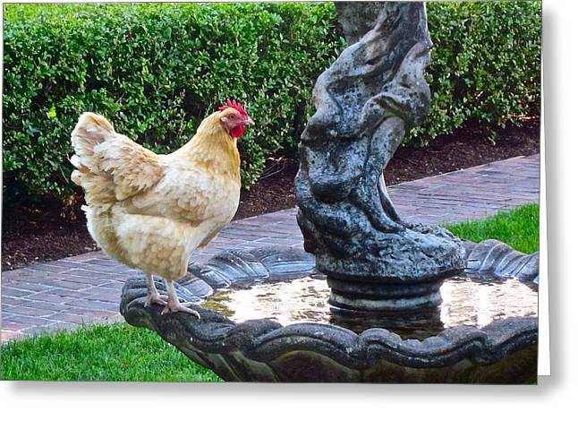 Statuesque Greeting Card by Gwyn Newcombe