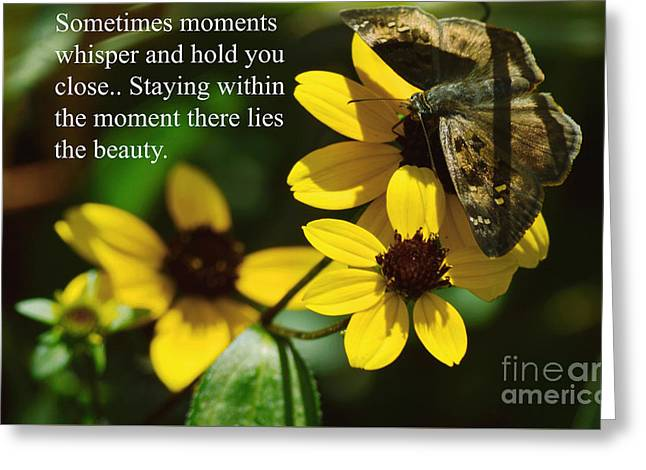 Staying Within The Moment Greeting Card by Robyn King