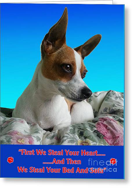 Dogs Digital Greeting Cards - Steal your heart Greeting Card by Martina Carney
