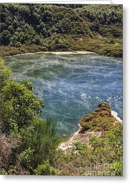 Steam At A Lake In Waimangu Greeting Card by Patricia Hofmeester