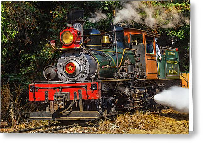 Steam Train Dixiana Greeting Card by Garry Gay