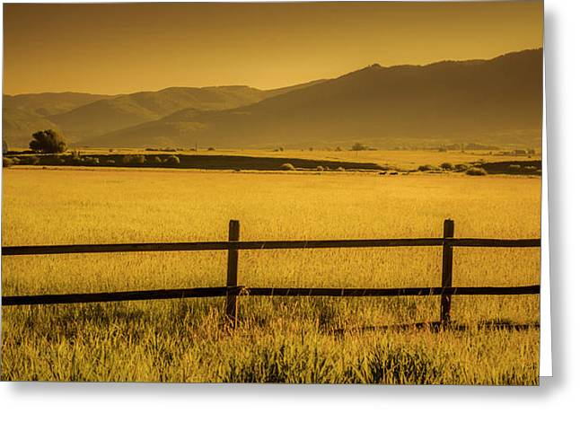 Mountain Valley Greeting Cards - Steamboat Springs Pastoral Morning Greeting Card by Don Schwartz