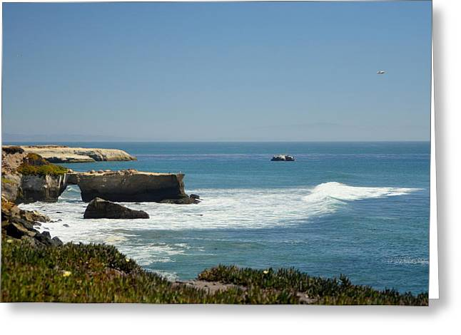 Steamer Lane, Santa Cruz Greeting Card by Antonia Citrino