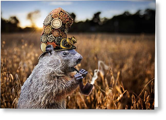 Wheat Field Sunset Print Greeting Cards - Steampunked Woodchuck Greeting Card by Karen Burke