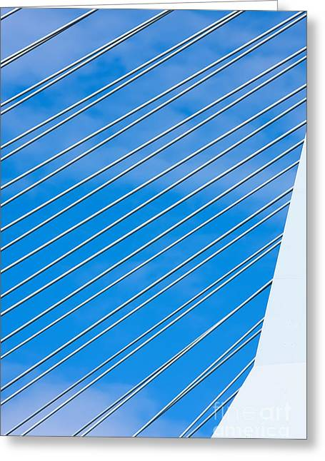 Famous Bridge Greeting Cards - Steel wires suspension bridge Greeting Card by Jan Brons