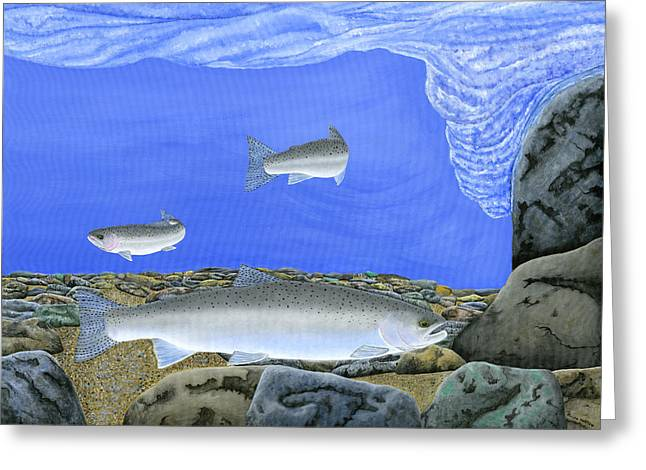 Fly Fishing Print Greeting Cards - Steelhead Holding Greeting Card by Ralph Martens