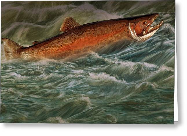 Steelheads Greeting Cards - Steelhead Trout Fish No.143 Greeting Card by Randall Nyhof