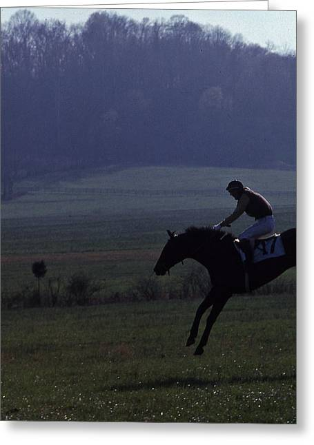 Brentwood Tennessee Greeting Cards - Steeplechase - 1 Greeting Card by Randy Muir