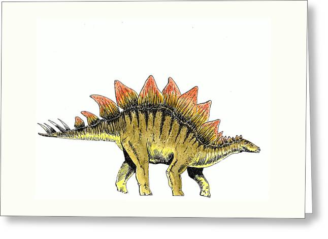 Stegosaurus Greeting Card by Michael Vigliotti