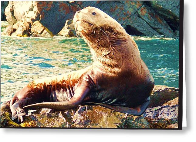 Sea Animals Greeting Cards - Stella Sea Lion Greeting Card by Penelope Cyr-Lorenson