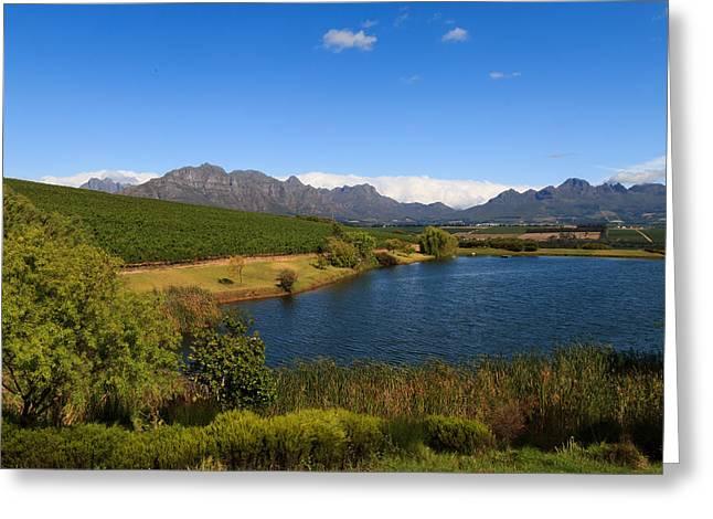 Winelands Greeting Cards - Stellenbosch   Greeting Card by Davide Guidolin