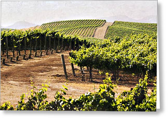Step Into My Vineyard Greeting Card by Marilyn Hunt