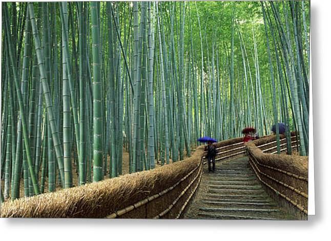 Stepped Walkway Passing Greeting Card by Panoramic Images