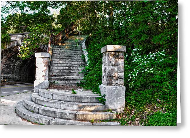 Steps In West Fairmount Park - Philadelphia Greeting Card by Bill Cannon