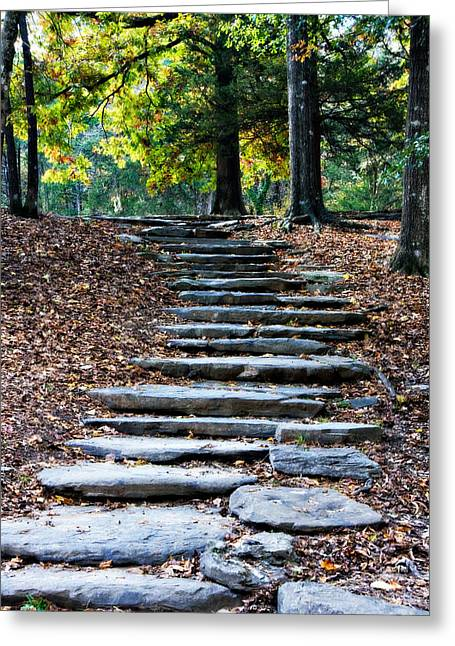 Beavers Bend Park Greeting Cards - Steps Of Fall Greeting Card by Lana Trussell