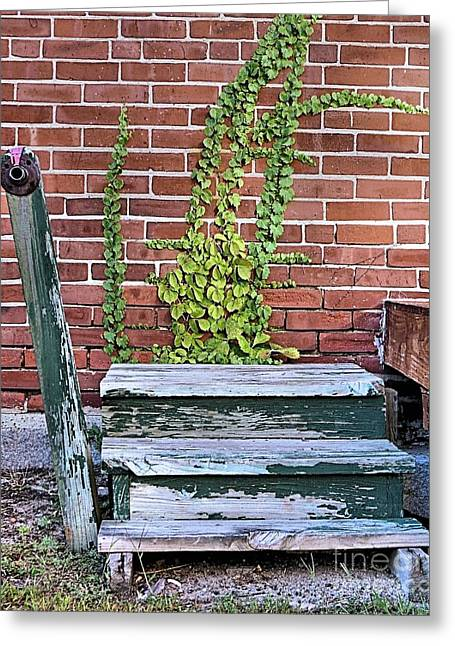 Wooden Stairs Greeting Cards - Steps to Loading Dock Greeting Card by Janice Drew