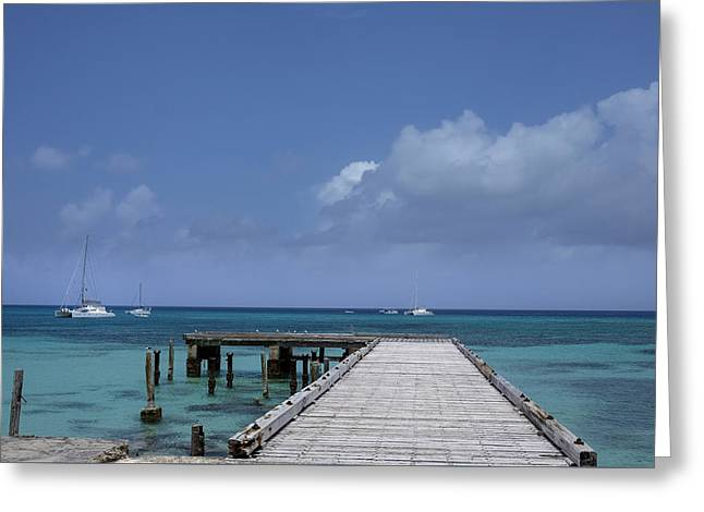 Docked Sailboats Greeting Cards - Steps to Paradise Greeting Card by Daniel Hart