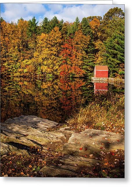 Stewart Woods Autumn Greeting Card by Karol Livote