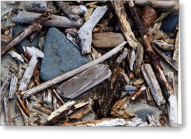 Beach Greeting Cards - Sticks and Stones Greeting Card by Bonnie Bruno