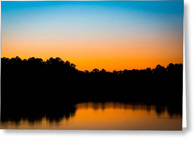 Peaceful Tree At Sunset Greeting Cards - Still Beauty Greeting Card by Shelby  Young