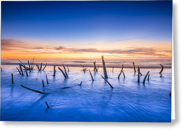 Still Standing Greeting Card by Marvin Spates