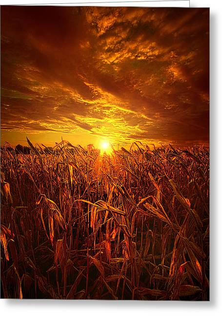 Still Standing Greeting Card by Phil Koch