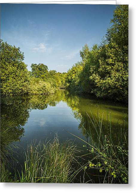 Reflecting Water Greeting Cards - Still Waters Greeting Card by Andy Mayes