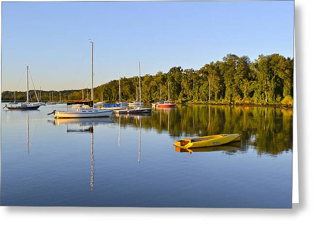 Alexandria Virginia Greeting Cards - Still waters on the Potomac River at Belle Haven Marina Virginia Greeting Card by Brendan Reals