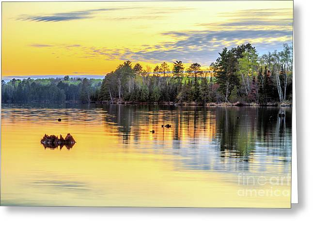 Boundary Waters Greeting Cards - Stillness Greeting Card by Ernesto Ruiz