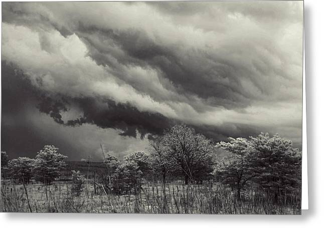 Stillness Of The Storm Greeting Card by Toni Hopper