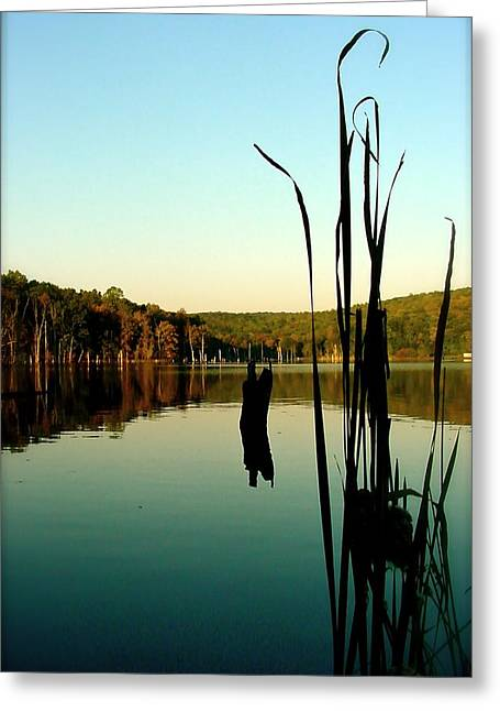 Lakes Pyrography Greeting Cards - Stillness   Photograph Greeting Card by Iconic Images Art Gallery David Pucciarelli