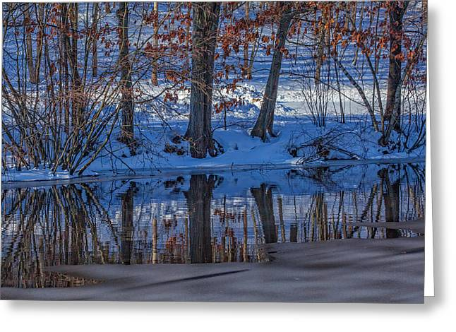 Stillness Reflects Greeting Card by Karol Livote