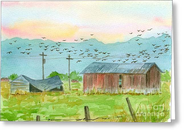 Flocks Of Birds Drawings Greeting Cards - Stillwater Birds at Sunrise Greeting Card by Cathie Richardson