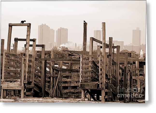 Brown Tones Greeting Cards - Stockyard Pens Greeting Card by Fred Lassmann