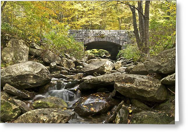 Gatlinburg Tennessee Greeting Cards - Stone Bridge 6063 Greeting Card by Michael Peychich
