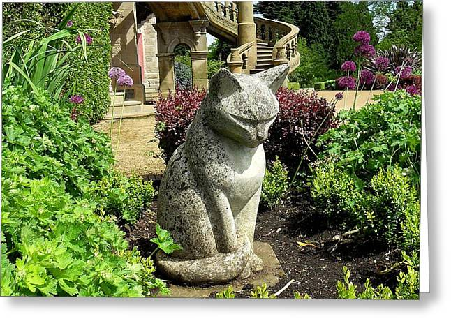 Recently Sold -  - Shower Curtain Greeting Cards - Stone Cat Greeting Card by Patrick J Murphy