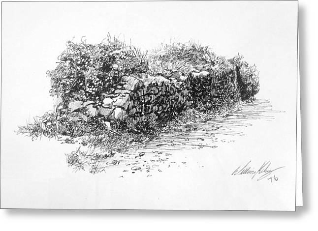 Pen And Ink Drawing Greeting Cards - Stone Fence Greeting Card by William Kelsey