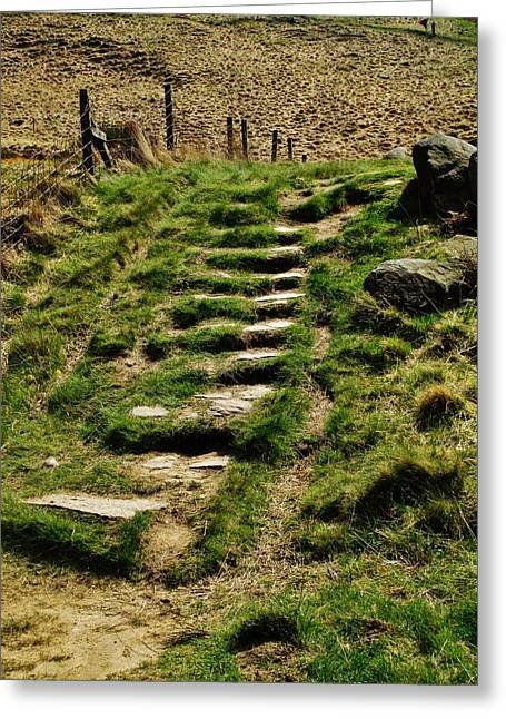 Stepping Stones Greeting Cards - Stone Steps Greeting Card by CL Redding