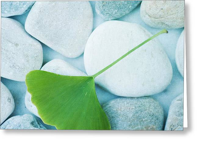 Calmness Greeting Cards - Stones And A Gingko Leaf Greeting Card by Priska Wettstein