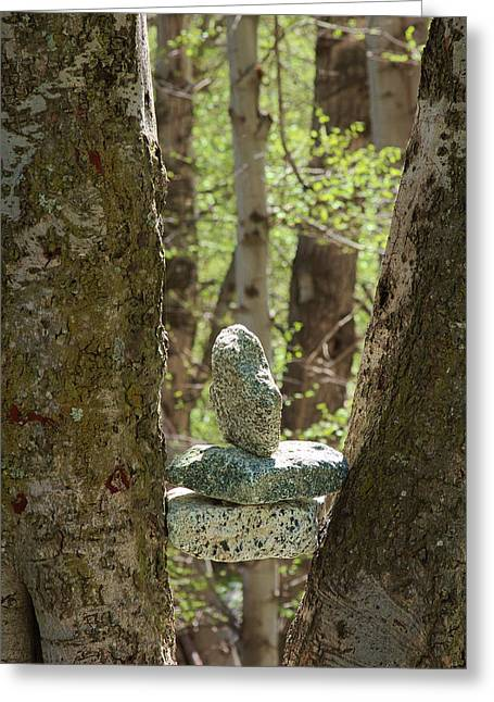 Angeles Forest Greeting Cards - Stones Stuck between Trees Greeting Card by Viktor Savchenko