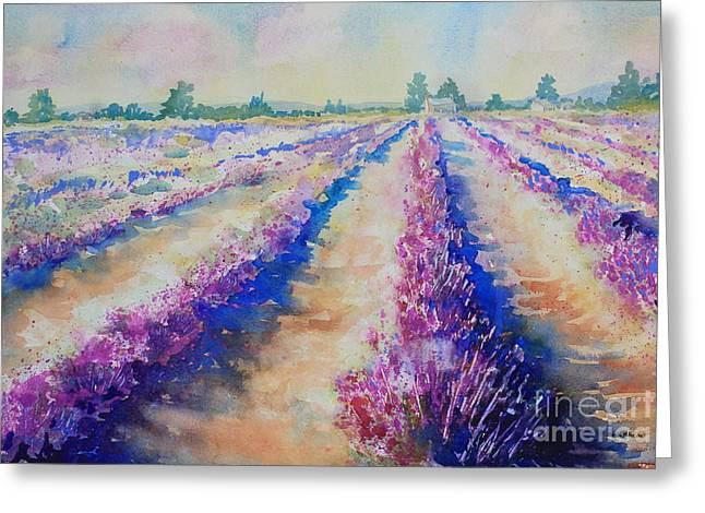 Stonewall Lavender IIi Greeting Card by Marsha Reeves