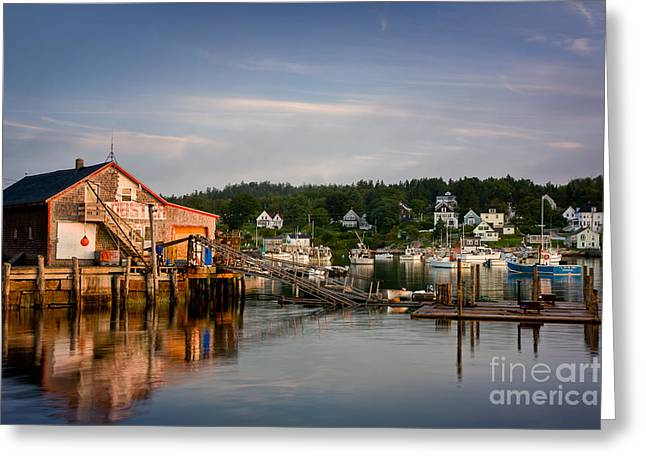 Stonington Lobster Co-op Greeting Card by Susan Cole Kelly