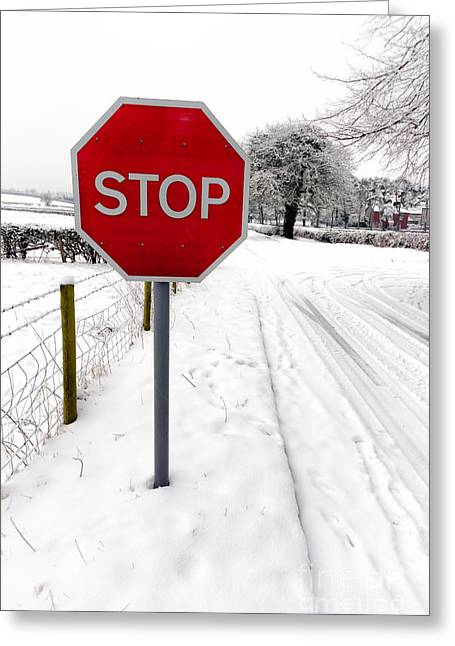 Stop Greeting Card by Adrian Evans