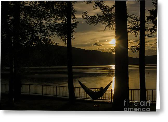 Stop... Hammock Time Greeting Card by Amy Sorvillo