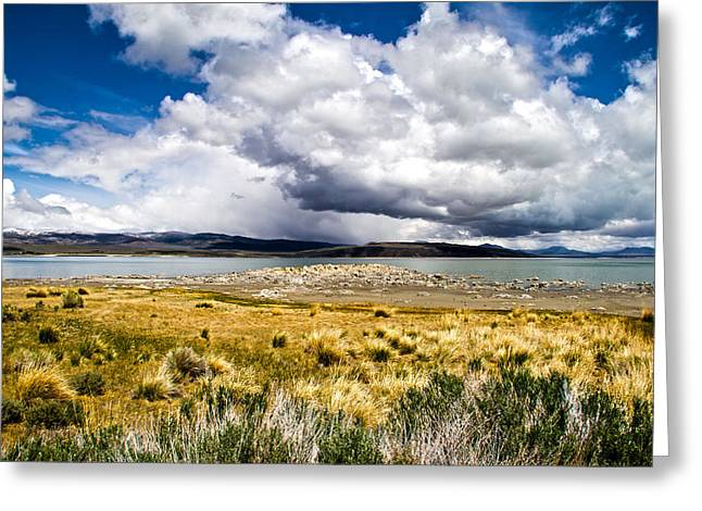California Beaches Greeting Cards - Storm At Mono Lake Greeting Card by Cathy Franklin