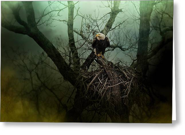 Eagles In Storms. Bald Eagles Greeting Cards - Storm At The Old Nest Greeting Card by Jai Johnson