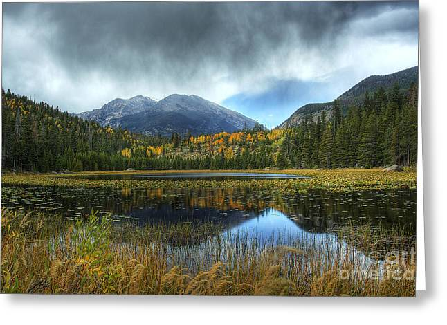 Water Fall Digital Art Greeting Cards - Storm Over Cub Lake Greeting Card by Pete Hellmann